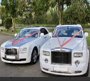 Perfect Pairs Hire in UK